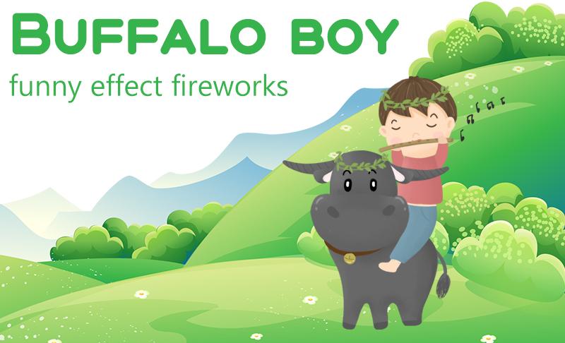 Buffalo Boy Fireworks